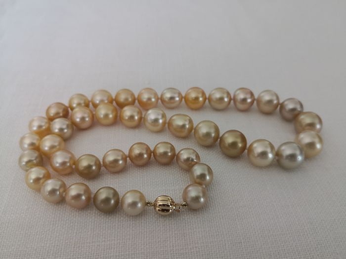 Golden south sea pearls, 10-13 mm - Necklace