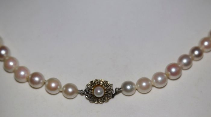 No Reserve price - 14 kt. Akoya pearls, White gold, 7.2-7.8 mm - Necklace Japanese sea/saltwater genuine Akoya pearls - Germany 1st half of the 20th century