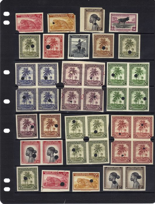 Belgisch-Congo - Palmiers / Palms / Palmen: Beautiful group of file copies