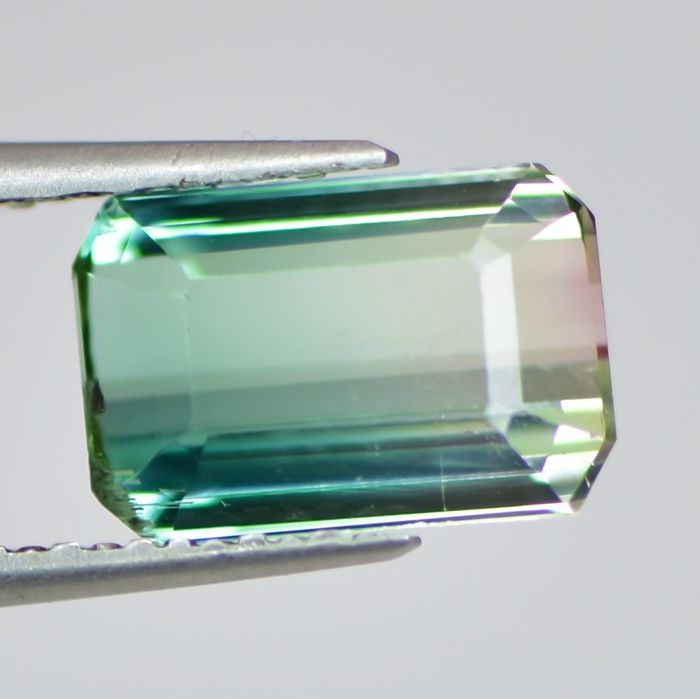Bicolore Tourmaline - 2.89 ct