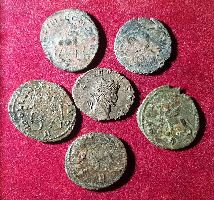 Empire romain. Lot 6 Antoninianii,  Gallienus (253-268 AD). Animal Zoo series: Hippocampus, Centaurus, Griffin, Panther
