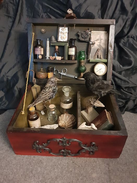 A Cabinet of Curiosities, with far-ranging contents - - - 20×40×30 cm