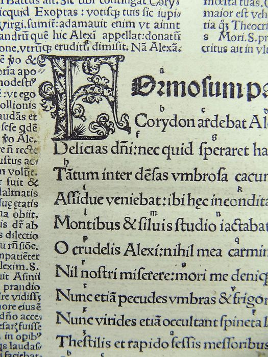 Lot of 9 post-incunabula leaves from Vergilius Maro, Publius (70-19 B.C.) - From Aegloga by Virgil published by Sebastian Brandt. One grotesque initial - 1502