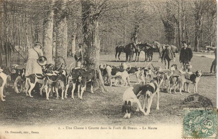 France - Deer hunting - traditional deer hunting with very lively cards - Postcards (Collection of 62) - 1900-1930
