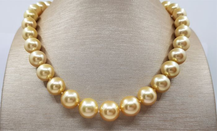 NO RESERVE - Large 10x13.5mm 24K Golden Saturation South Sea Pearls - Collar