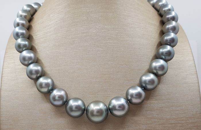NO RESERVE PRICE - Large 12x16mm Round Metallic Silvery-Green Tahitian Pearls Tahiti-Perlen - Halskette