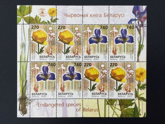 Bielorrusia 1992/2010 - Belarus, MNH collection