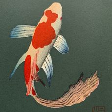 """Xilografia originale - pesce koi - Carta di gelso - pesce koi - Kunio Kaneko (b 1949) - """"Little Comet"""" - Hand-signed and numbered by the artist 191/200 - Giappone - 2006"""