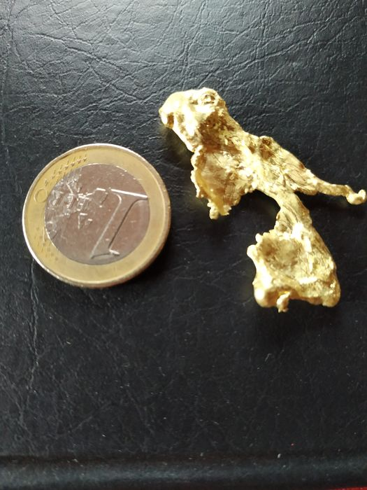 Gold Nugget - 5×26×41 mm - 9.14 g