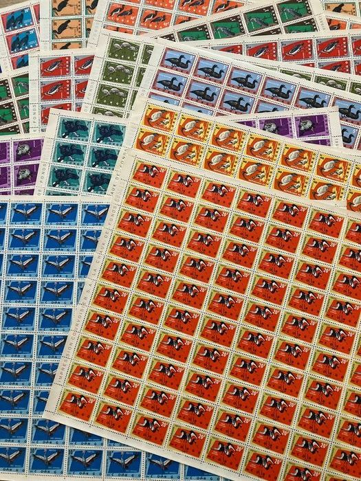 DR Congo 1963 - 'Protected Birds' in full sheets of 100 - OBP / COB 481/487 + 489/494