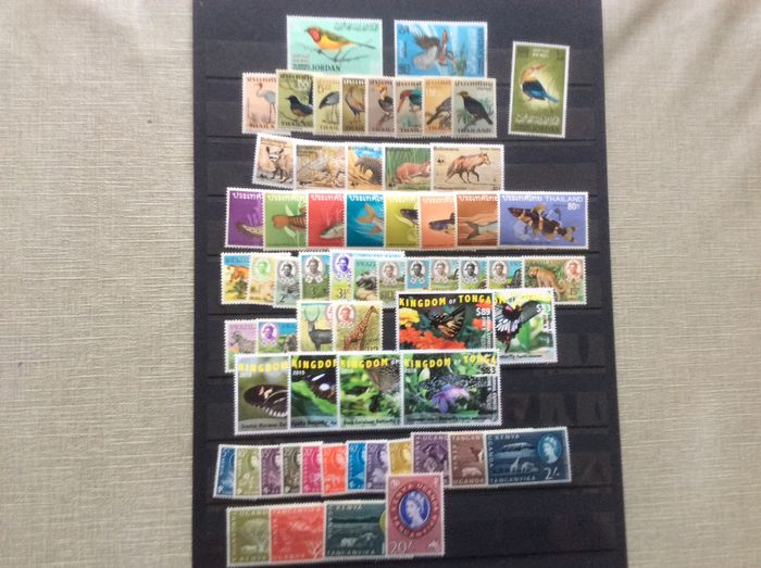World 1960 - Lot with Animals from, aamongst others, Thailand