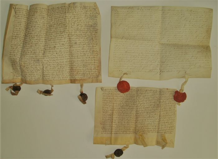 Manuscripts - Charter on Parchment 1564 / Deed of Mortgage on Parchment 1798 / Transfer Deed on Parchment 1552 - 1552/1798