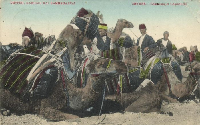 Turkey - Various places and attractions - Including very nice maps. - Postcards (Collection of 62) - 1900-1930