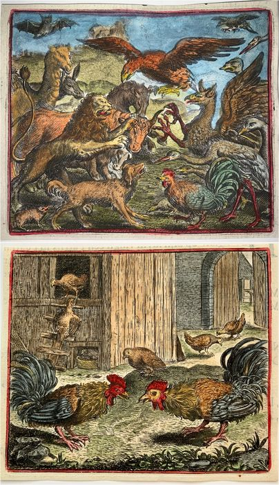 Lot of 2 engravings by Marcus Geerhaerts (died 1636) - [Mythology, Fables] Bestiary Phoenix & two cockerels, poultry- Rare etching, hand coloured - 1620
