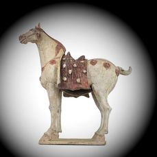 Mingqi - Terracotta - Very Rare and Special Large Caparisoned Horse, TL test, H-68 cm. - China - Tang Dynasty (618-907)