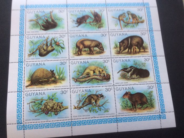 World 1968 - Lot with Animals