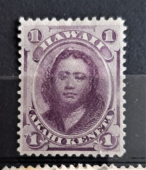 Hawaii 1851/1891 - Small collection with duplicates