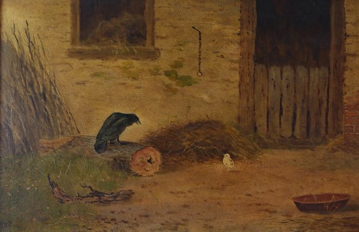 English school. (XX) - Crow eyeing a stray chick as dinner.