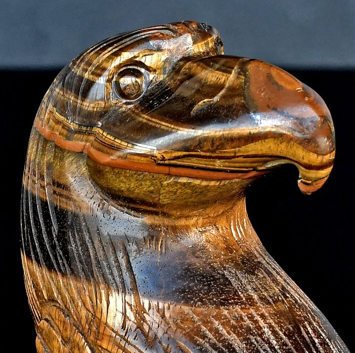Finely detailed Tiger's Eyes eagle head - 9.8×7.6×4.4 cm - 486 g