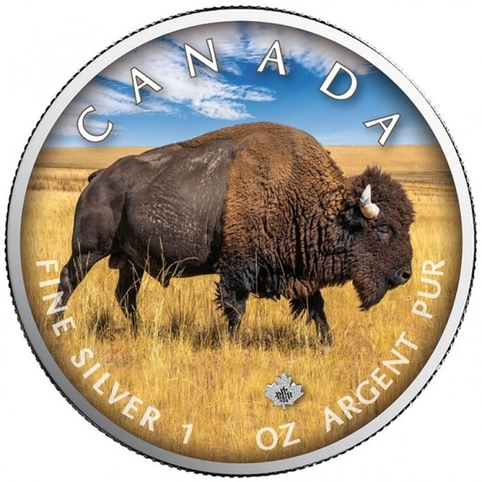 "Canadá. 5 Dollars 2021 - Maple Leaf - ""On the Trails of Wildlife - Bison"" - with COA - 1 Oz"