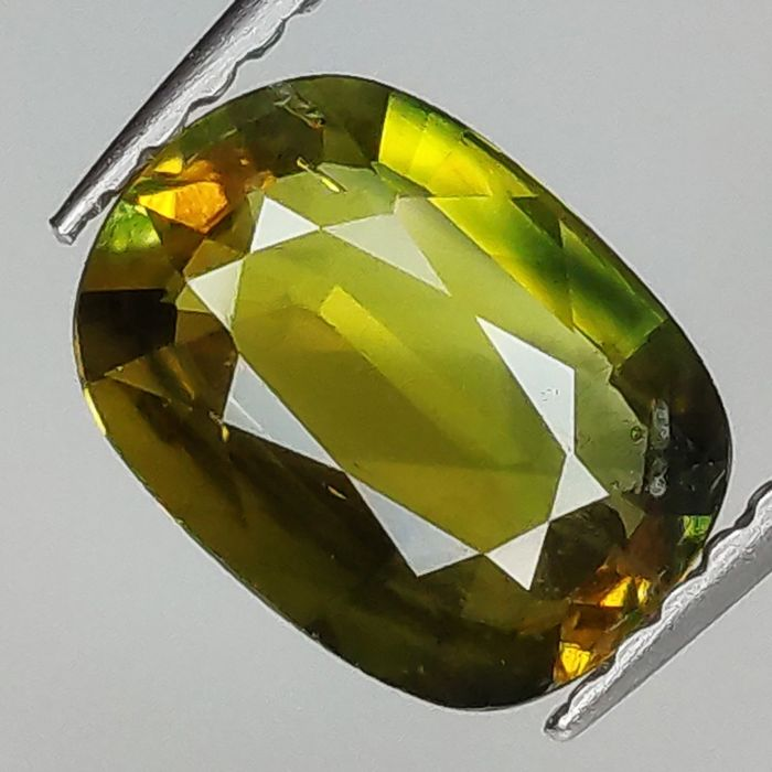 Party Sapphire - 1.57 ct