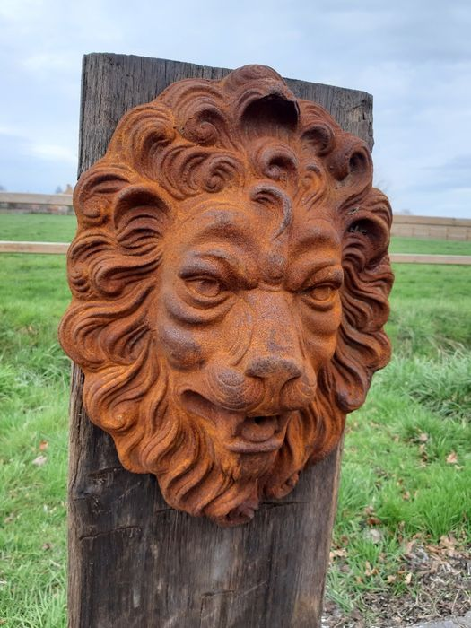 very heavy 11 kg lion's head in a rusty color - Iron (cast) - 21st century