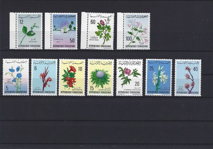 World 1950/1975 - Collection flowers better series