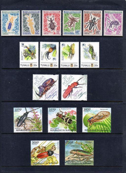 Wereld - Thematic Collection of Insects with Modern Blocks