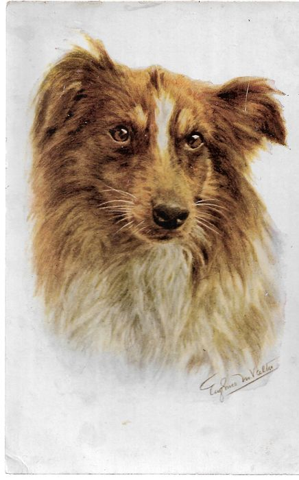 France - our friends the dogs - Postcards (Set of 60) - 1910-1930
