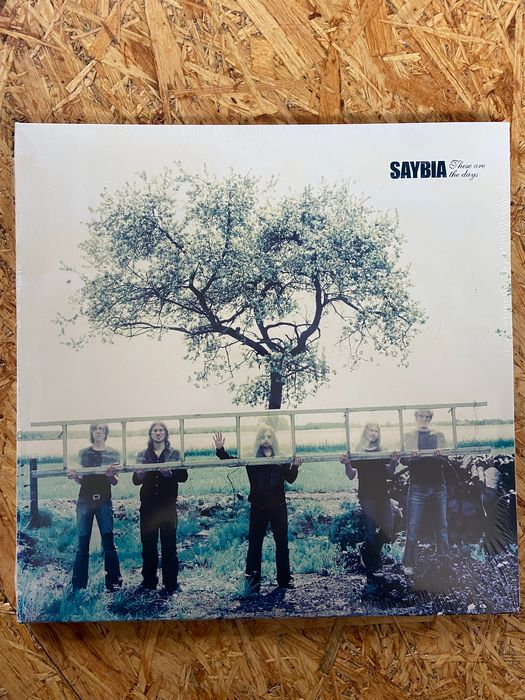 Saybia - These Are The Days - LP Album - 2004/2004