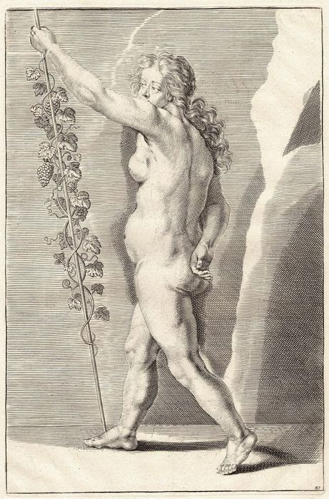 Crispian De Passe (1597-1670) - Study: Standing woman seen from the side with a vine.