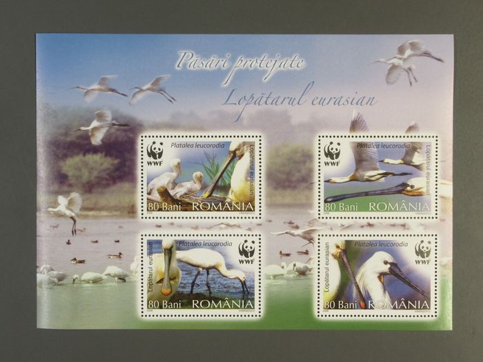 Lot 49257153 - International Stamps  -  Catawiki B.V. Weekly auction - Note the closing date of each lot