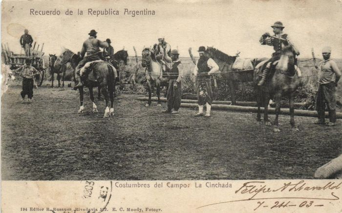 Argentina - Various places and places of interest - involving Buenos Aires and the countryside - Postcards (Collection of 75) - 1900-1960
