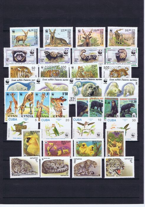 Wereld - Collection from World of WWF