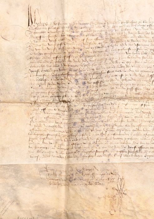 Duchess of Burgundy. - Letter in name of Mary of Burgundy, the Duchess of Burgundy. - 1465