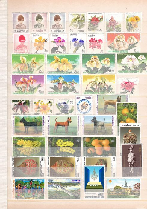 Thaïlande - Elaborate and wonderful collection of stamps and blocks - Michel
