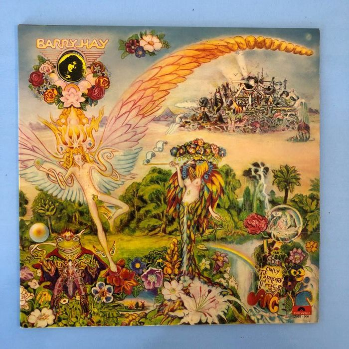 Barry Hay - Only Parrots , Frogs and Angels - LP Album - 1972/1972