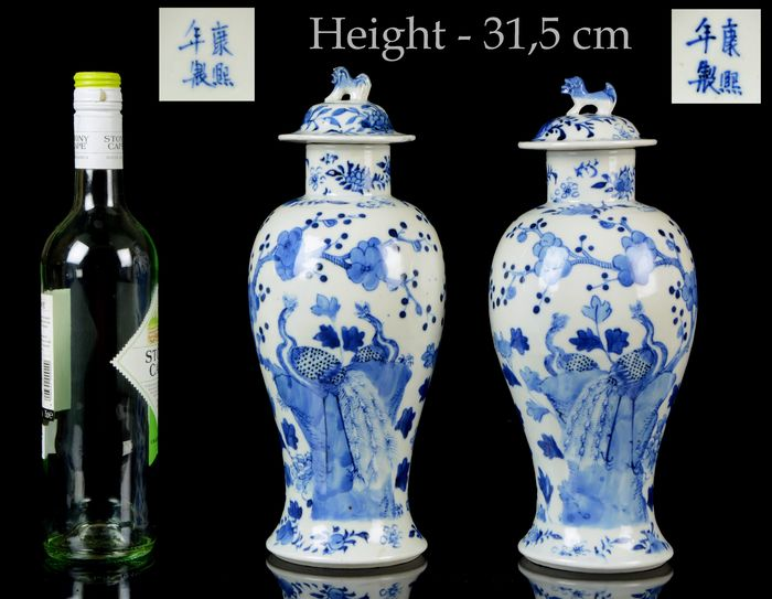 A pair of Chinese double Peacock vases and covers (4) - Blue and white - Porcelain - Peacock, prunus, plants, flowers, rocks - China - Guangxu (1875-1908)