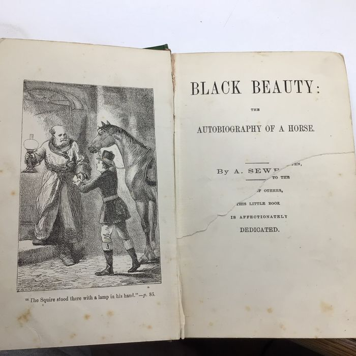 Anna Sewell - Black Beauty: the autobiography of a horse - 1880