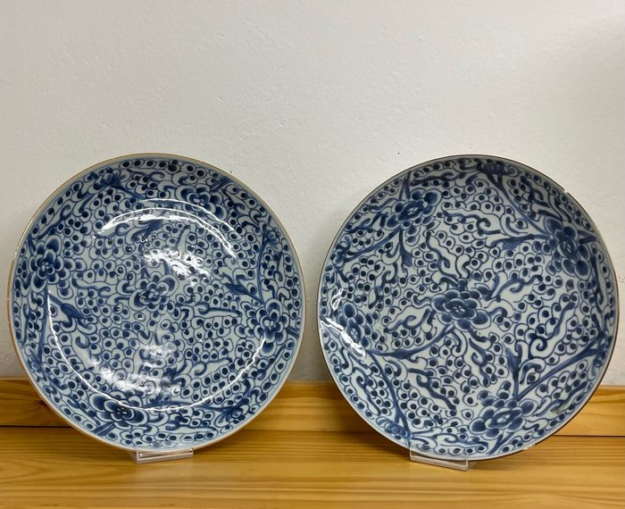 Plates (2) - Blue and white - Porcelain - Large. 27,5 cm blue and white plates - China - Qing Dynasty (1644-1911)