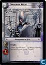 Gondorian Knight
