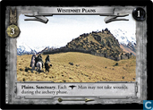 Westemnet Plains