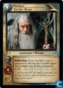 Gandalf, The Grey Wizard