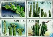 1999 Cacti (AR 81)