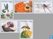 2002 Fauna (NA 345)