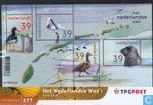 Niederländischen Wattenmeer