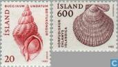 1982 shells (IJS 212)