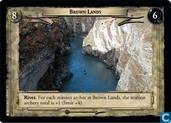 Brown Lands