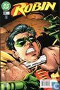 Robin 29