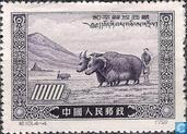Tibet Liberation